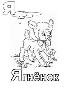Ягненок раскраска для детей с буквой Я