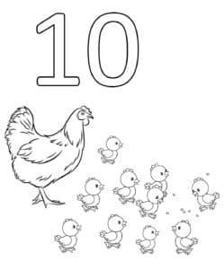 раскраска цифра 10 цыплят
