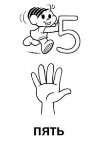 рука и цифра пять