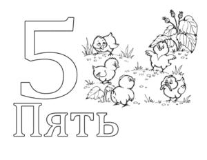 цифра 5 раскраска цыплята