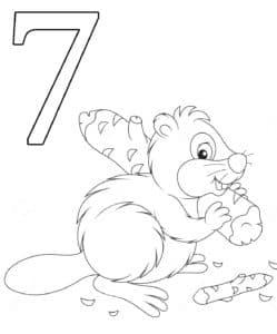 раскраска цифра семь и бобер