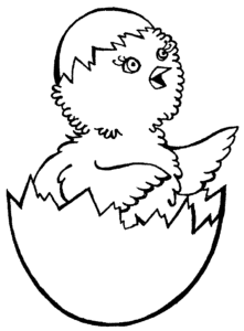 цыпленок в яйце