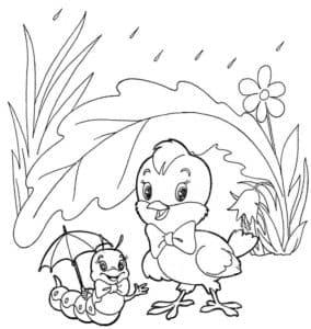 цыпленок и гусеница