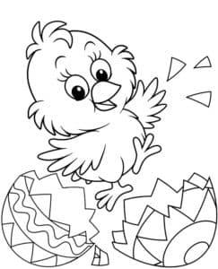 цыпленок танцует