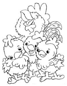 три цыпленка и курица