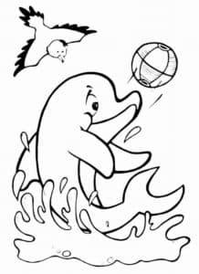 дельфин с мячиком и птичка