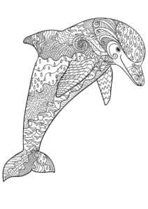 дельфин раскраска антистресс