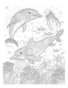 подводный мир антистресс