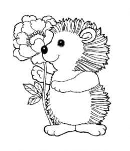ежонок с цветком