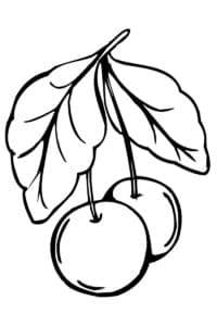 раскраска вишня