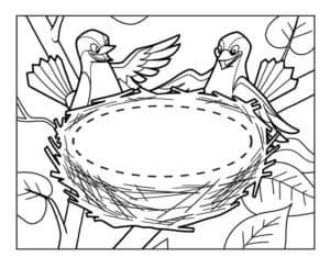 две птички возле гнезда