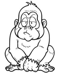 недовольная обезьянка