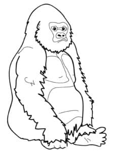 обезьянка сидит
