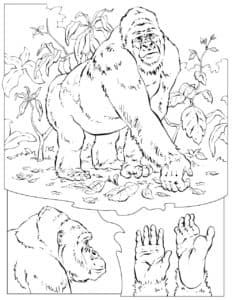 раскраска детская обезьяны