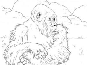 волосатая горилла