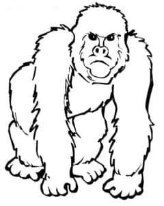 злая обезьяна