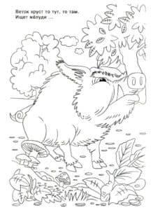 кабан и грибы