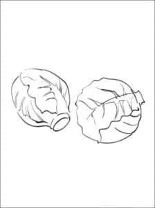 две капусты раскраска для детей