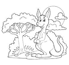 кенгуру возле дерева