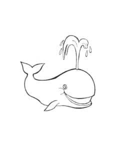 кит улыбается