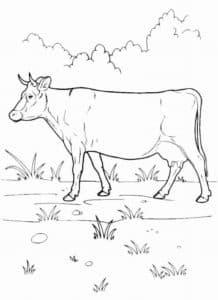 корова на природе