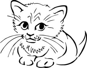 детская раскраска кошка