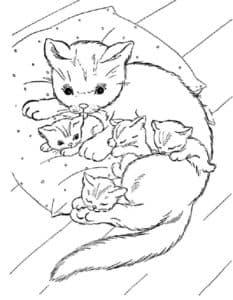 кошка и котята на подушке