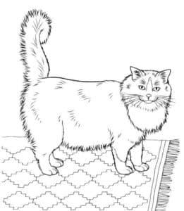 большой кот детская раскраска