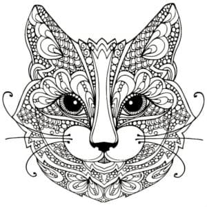 морда кота