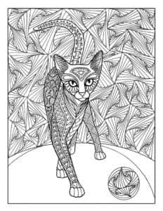 антистресс кот