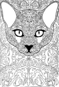 кошка картинка