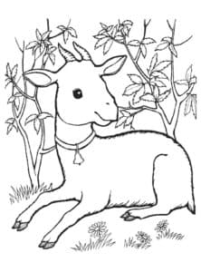 коза на природе