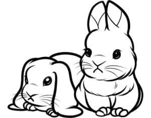 кролики с треугольными ушами