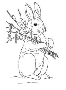 кролик с ветками