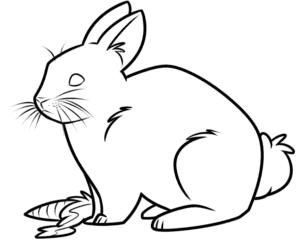 кролик с морковкой раскраска