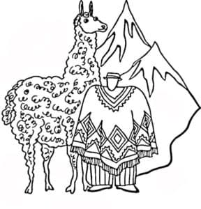 лама и костюм