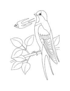 ласточка и маленькая птичка