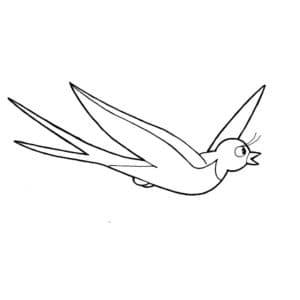 птичка ласточка раскраска