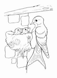 ласточка и птенцы
