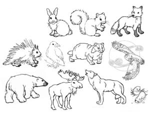 раскраска лесные животные