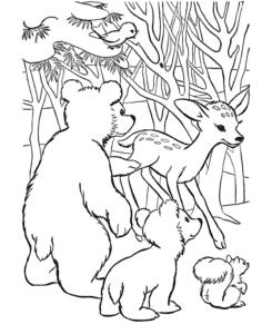 медвежата и белочка