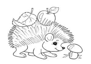 ежик с яблоком и грибком