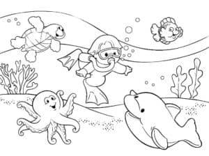 рыбки и аквалангист