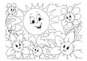 солнышко и ромашки
