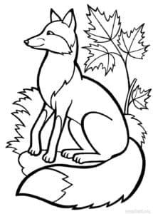лисичка и листья