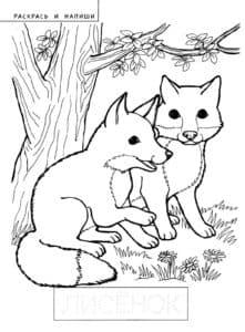 две лисички под деревом