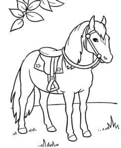 лошадь раскраска