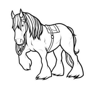 лошадь волосатая