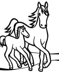 Лошадка и пони