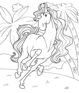 лошадка и пальмы